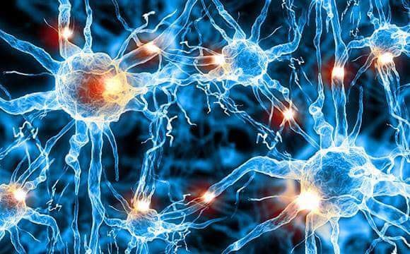 redox signaling molecules neurons firing cells